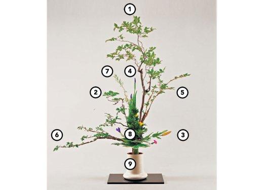 Ikebana com números indicando a posição de cada elemento