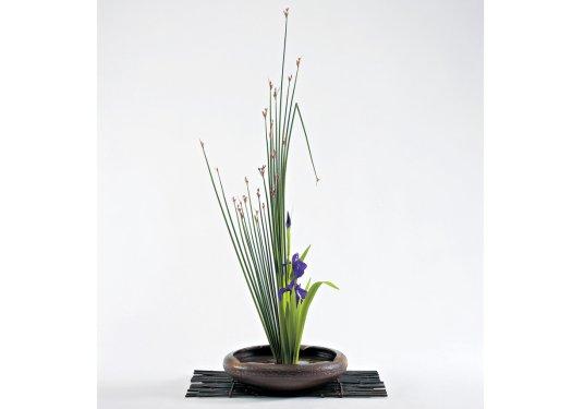 Ikebana com folhas verdes pontudas e pequenas flores roxas
