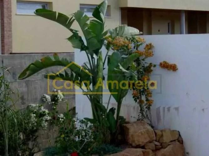 Plantas para execução de jardins
