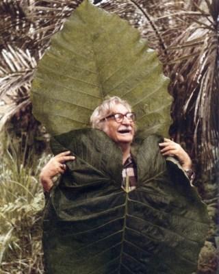 Roberto Burle Marx - theplanthunter.com.au