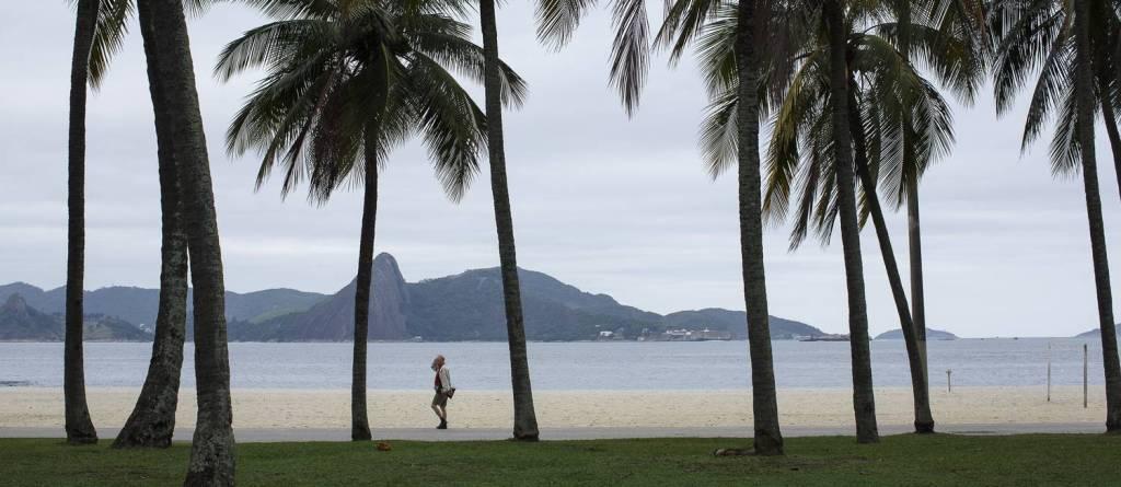 Parque do Flamengo com linda e tranquila vista da baía de Guanabara. Muitos coqueiros para enfeitar. Imagem: O Globo