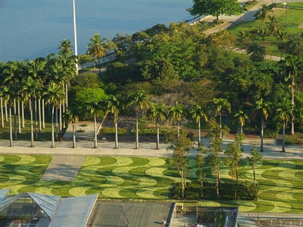 Em destaque, palmeiras do Parque do Flamengo e gramado com duas espécies de gramínea, formando curvas que remetem a ondas. Imagem: SkyScraperCity