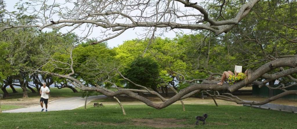 Mais uma visão do parque construído sobre o infértil solo de um aterro e que se tornou o maior espaço de lazer do rio de Janeiro. Imagem: O Globo