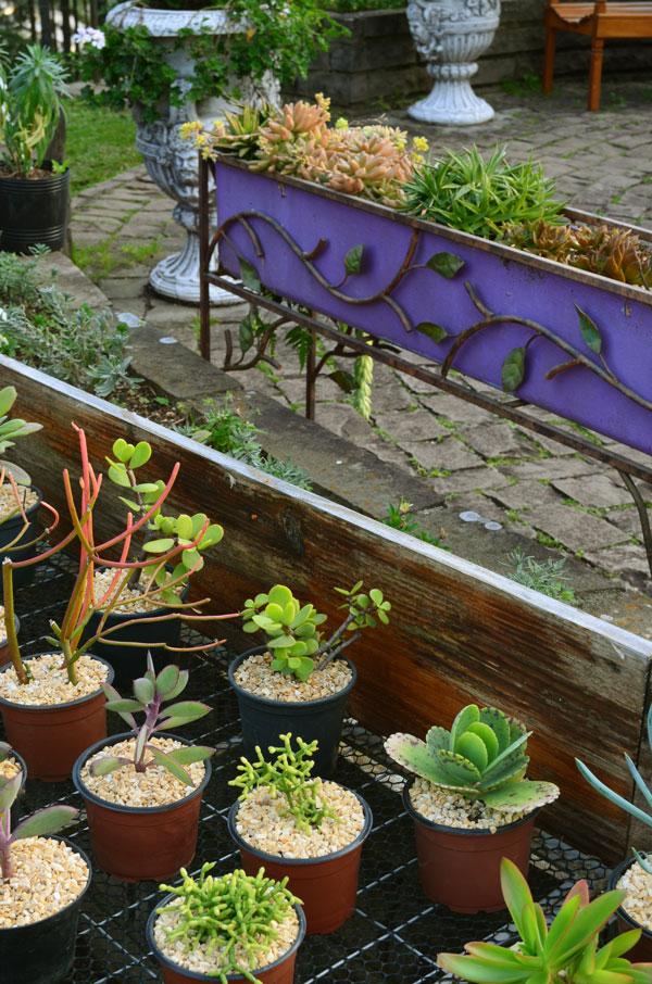 le-jardin-casa-baunilha3