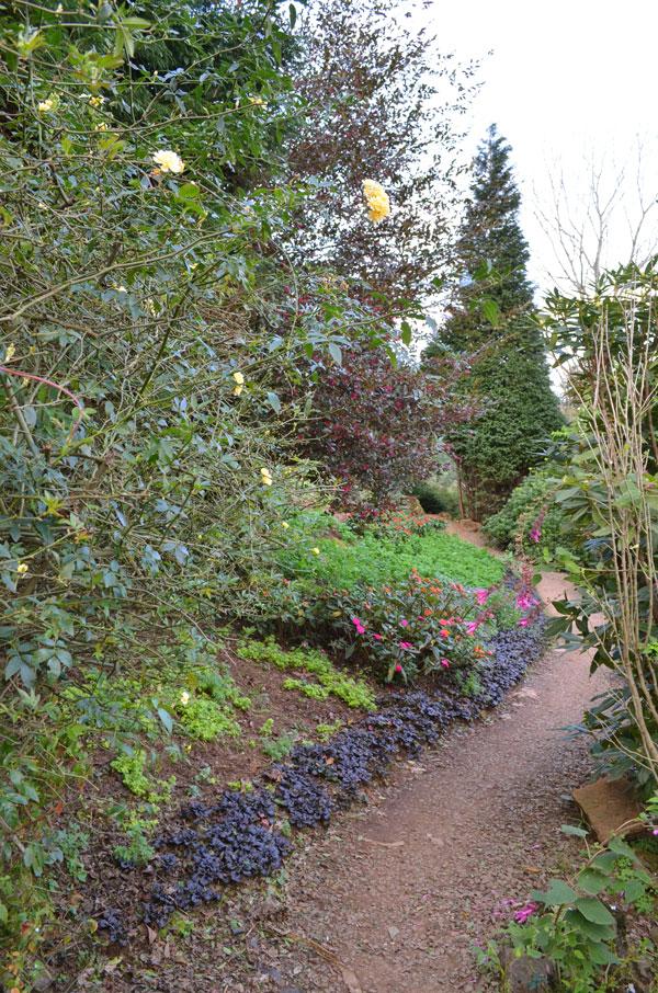 le-jardin-casa-baunilha6