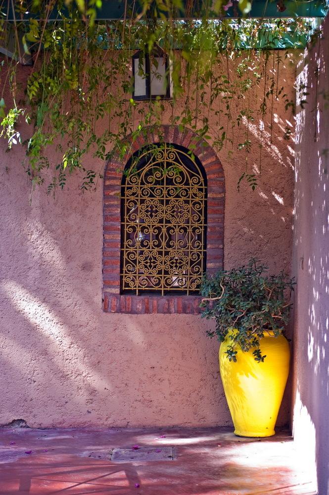 La vibración de colores del jardín Majorelle en Marruecos