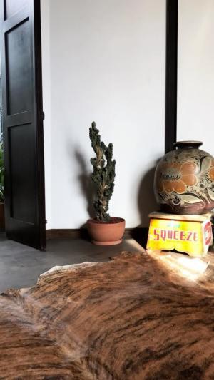 Macetas. Tienda de muebles y decoración en Cancún.