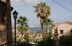 Palmen, Meer, Sonne: Ab in den Urlaub.