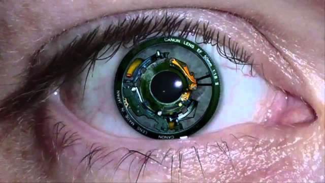 Imagem da notícia: Israel: retina artificial poderá devolver visão a cegos