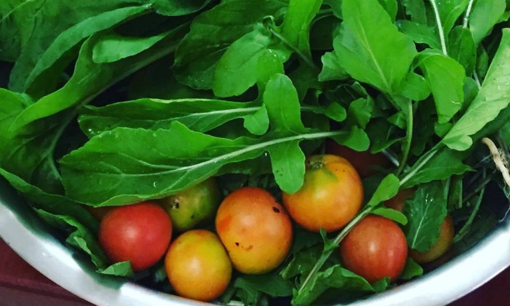KiRa Tomatoes