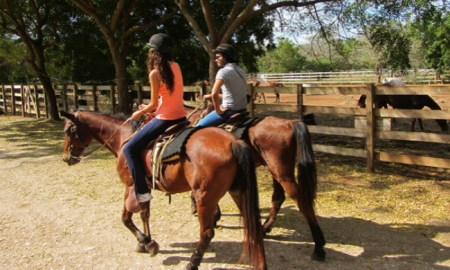 AOD Horseback Riding