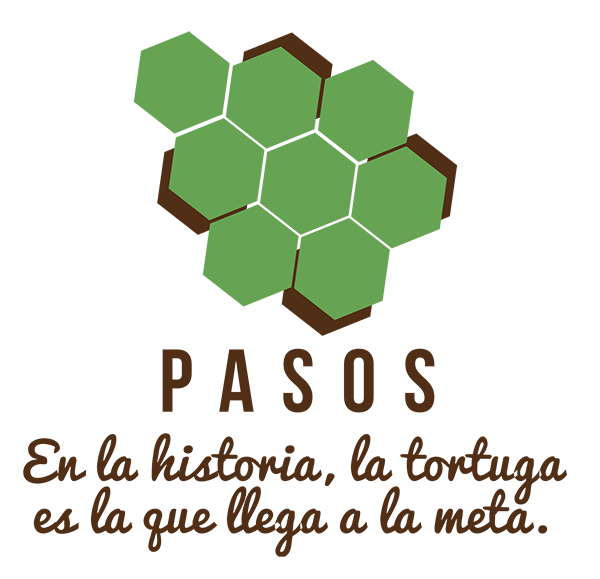 pasos-web-turtle2