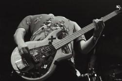 kao-rocknrollopdekaaij-thebunnybonanzas-0122