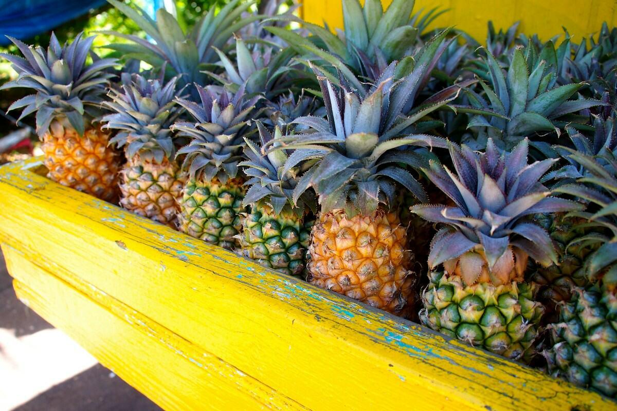 pineapples plant-based diet