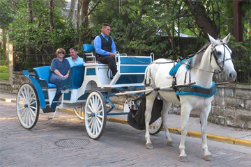 Add-On Wedding Carriage Ride