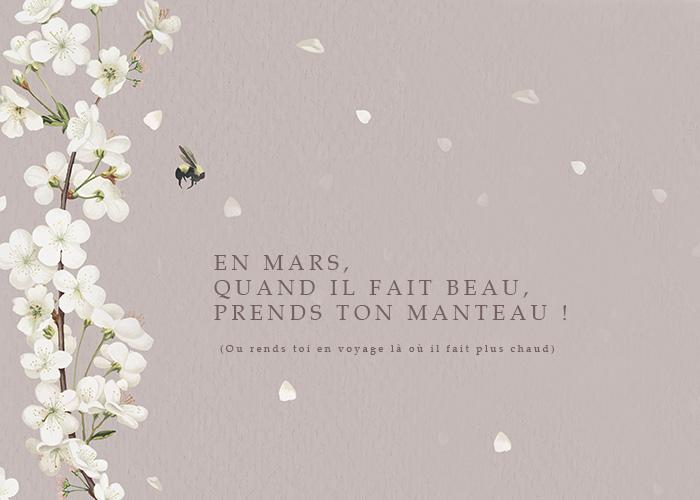 Annonce mars dicton sakura