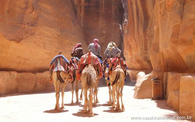 Camelos Petra