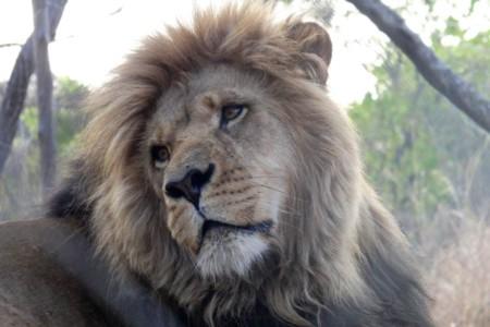 6 dicas de como encontrar hospedagem barata em uma viagem pela África