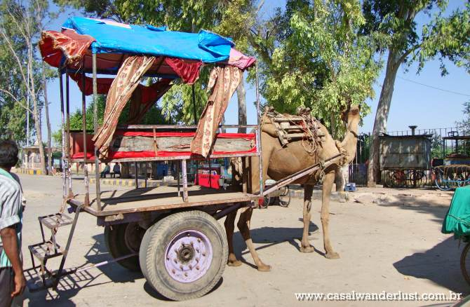 Transporte Taj Mahal