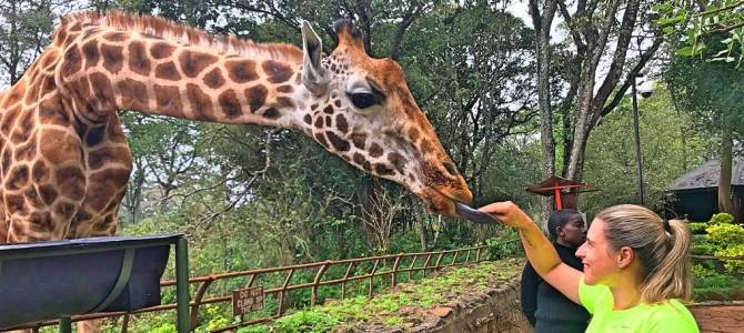 Giraffe Center, em Nairóbi, no Quênia
