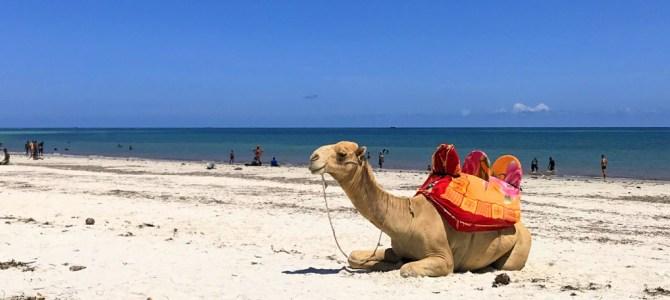 Roteiro de 10 dias em Mombaça, no Quênia