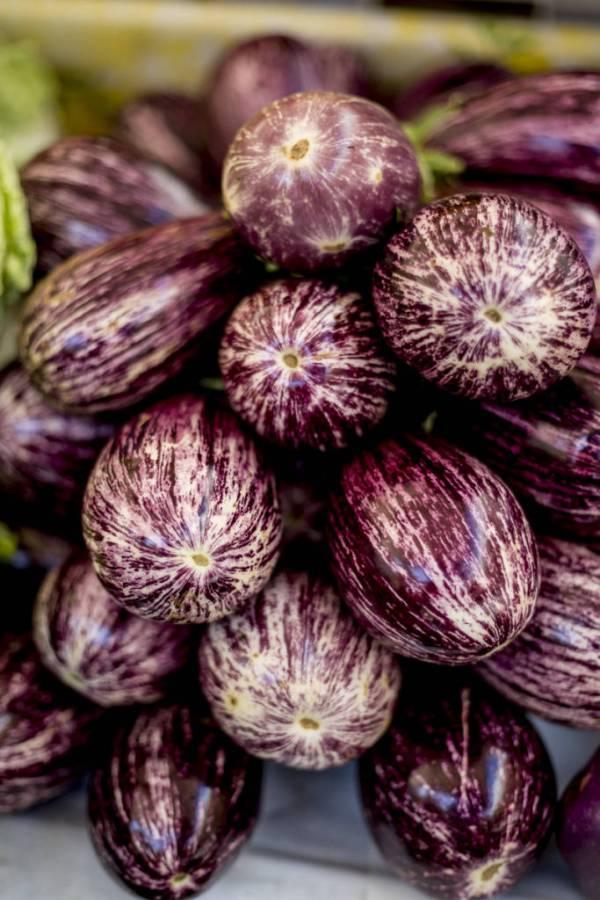 Italian eggplant or aubergine are in season in June