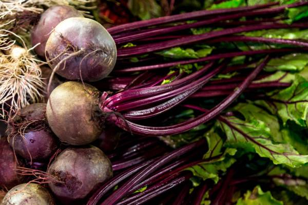 Beetroots are in season · www.casamiatours.com