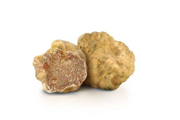Truffles · www.italyfoodandwinetours.com