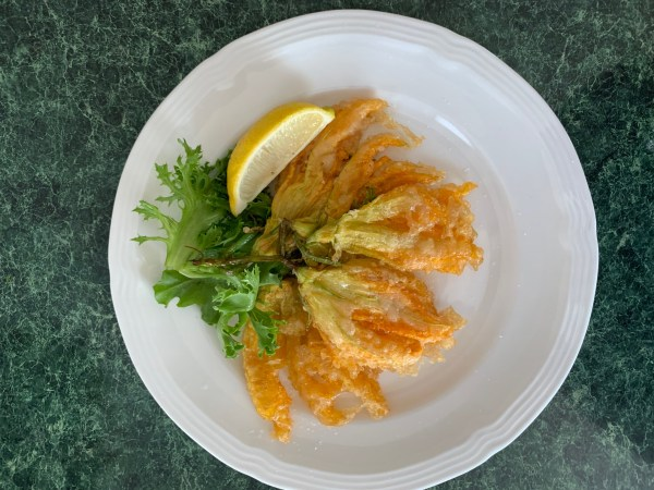 stuffed and fried zucchini blossoms