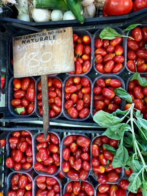 datterino tomatoes