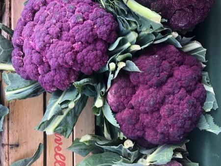 bastaddu affucatu, Sicilian purple cauliflower