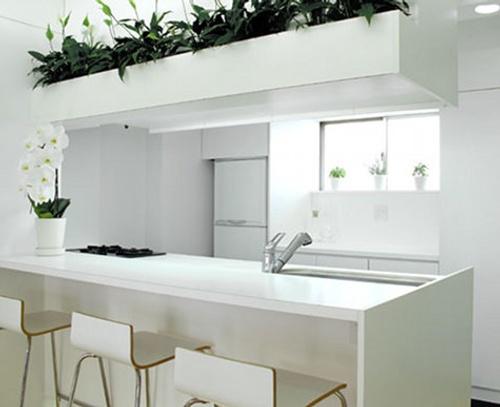 Decoraci n de cocinas peque as color blanco for Fotos de decoracion de cocinas pequenas