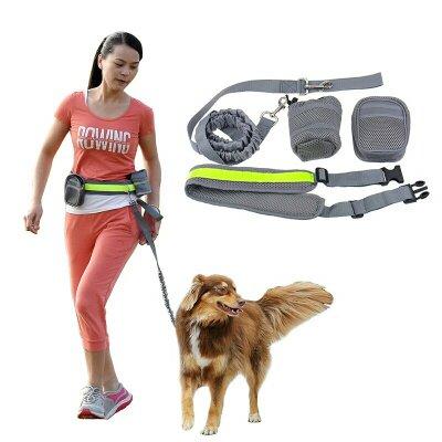 Desporto com o cão trela 1