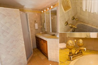 Master bedroom suite, first en-suite bathroom, vanity and shower, tub and sink brass fixtures.