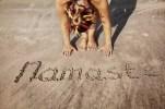 24399238 - woman doing yoga on the beach near namaste handwriting in goa, india