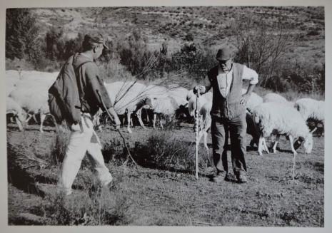 Pastores en Patones