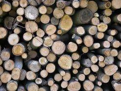 madera en la construcción de Casas Carbonell