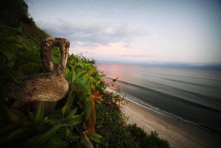 casa-selvatica-surf-10