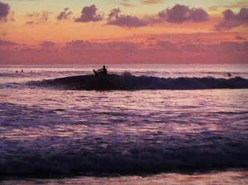 casa-selvatica-surf-11
