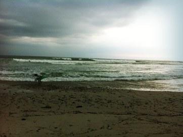 casa-selvatica-surf-contest-3