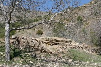 Restos del Bujio del Maestrillo