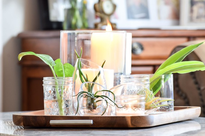air plant tray decor made with glass votive holders