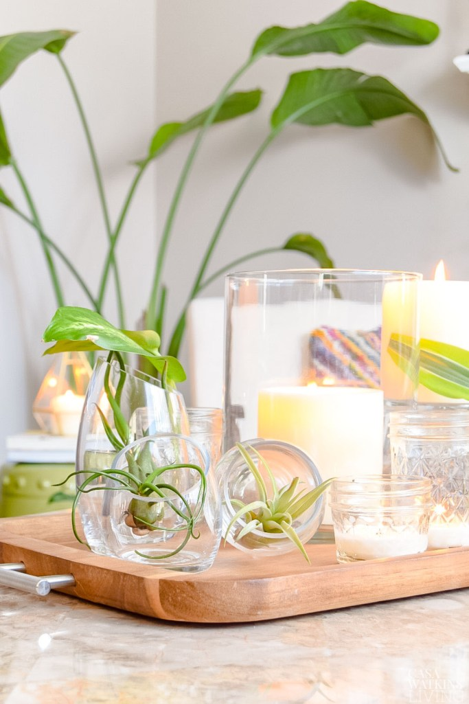 wooden tray with air plants and candles for coffee table decor