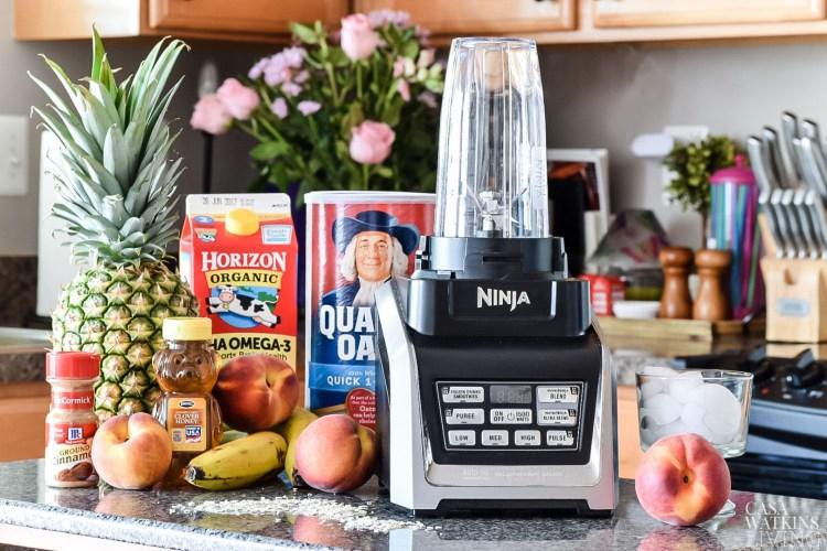 breakfast smoothie recipes with ninja blender