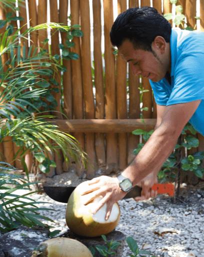 tony-coconuts05