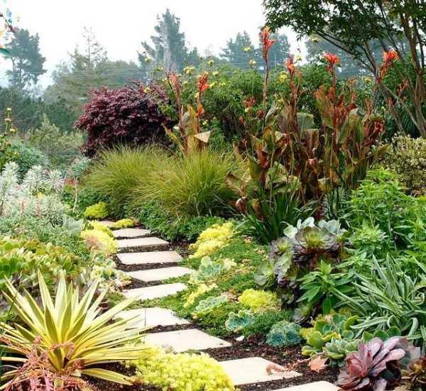 modern succulent garden ideas Senderos de piedra para jardines naturales