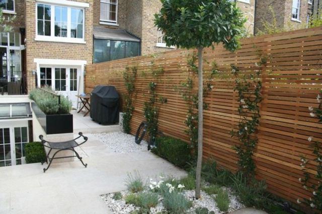 arbol naranjo jardin pequeño valla