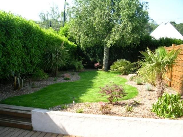 patio jardin muchas plantas diseño