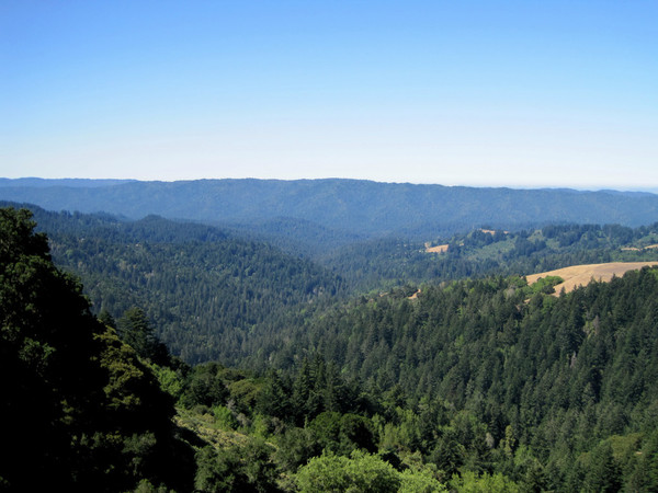 Butano Ridge spans the entire length of this photo from Skyline Ridge
