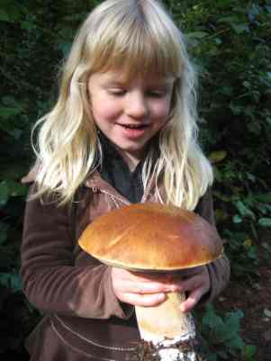 Alexandra and the Big Bolete